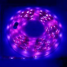 CINTA LED EXTERIOR 5 METROS VIOLETA